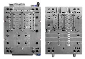moule02-300x208-300x208